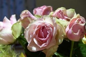 Bouquet766905__180